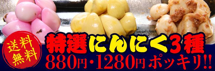 特選にんにく3種で880円・1280円送料無料!!
