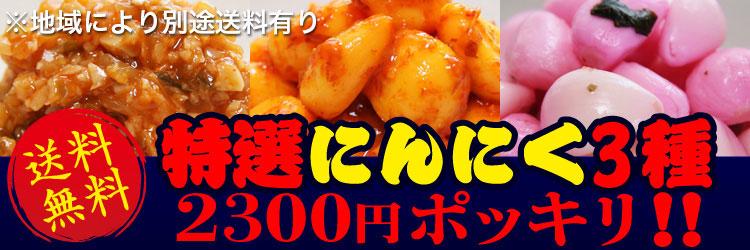 送料無料!!特選にんにく3種2000円ポッキリ!!