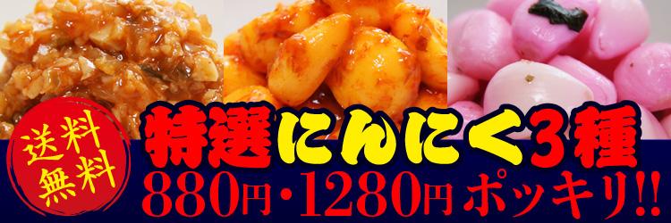 特選にんにく3種の皿盛り880円送料無料!!